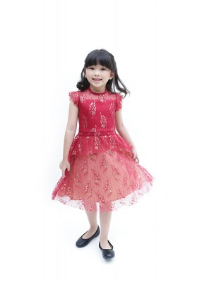 Agnola Lace Dress Red